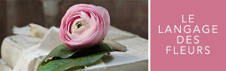 cliquez vers le langage des fleurs
